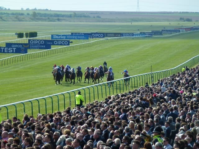 1000 Guineas Stakes Horse Race