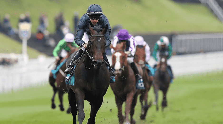 Epsom Derby Race Horse