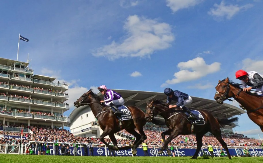 Betting Strategies for Flat Racing - 4 things to know!