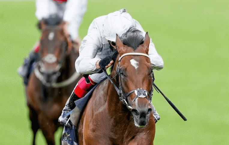 QIPCO Champions Day Preview